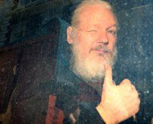 Vydání Assange do USA by mělo hrozný dopad na svobodu tisku, míní evropská komisařka pro lidská práva